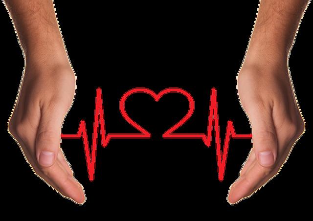 ochrana srdce a cév