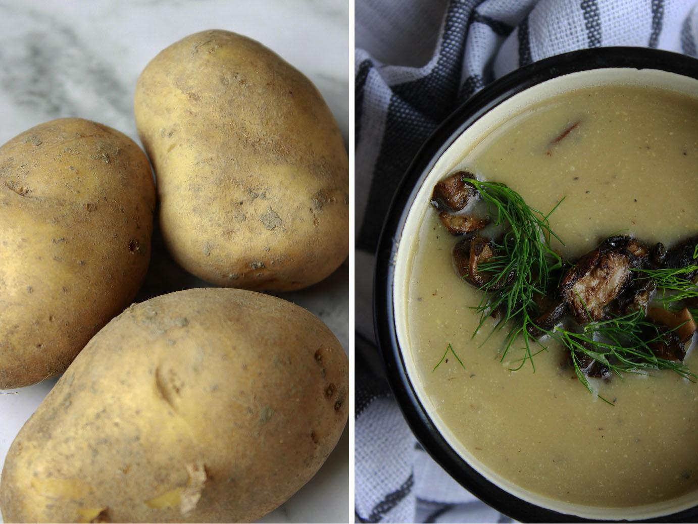 bramboračka s houbami