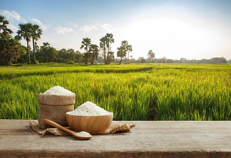 6d5970165c0 Rýžová dieta - potraviny