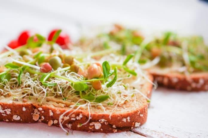 celozrnný sendvič s hummusem a zeleninou