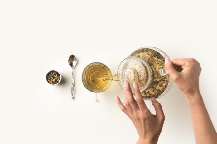 kotvičníkový čaj