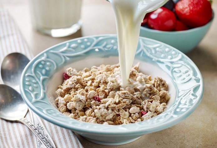 ořechová granola se sušenými brusinkami zalitá sójovým mlékem