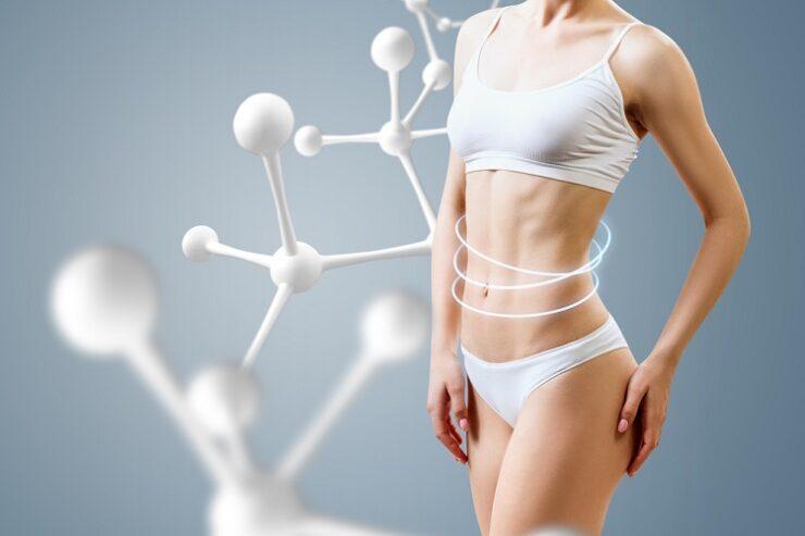 Co je to bazální metabolismus a jak ho urychlit